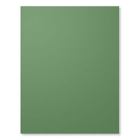 "Garden Green 8-1/2"" X 11"" Card Stock"